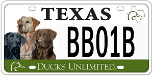 TX Labs plate resized